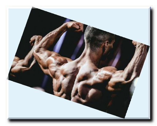IGF-1 and its functions in your body